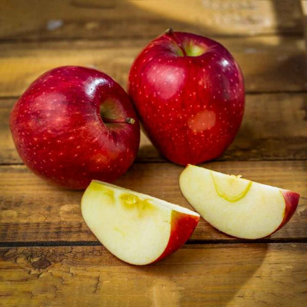سیب-قرمز
