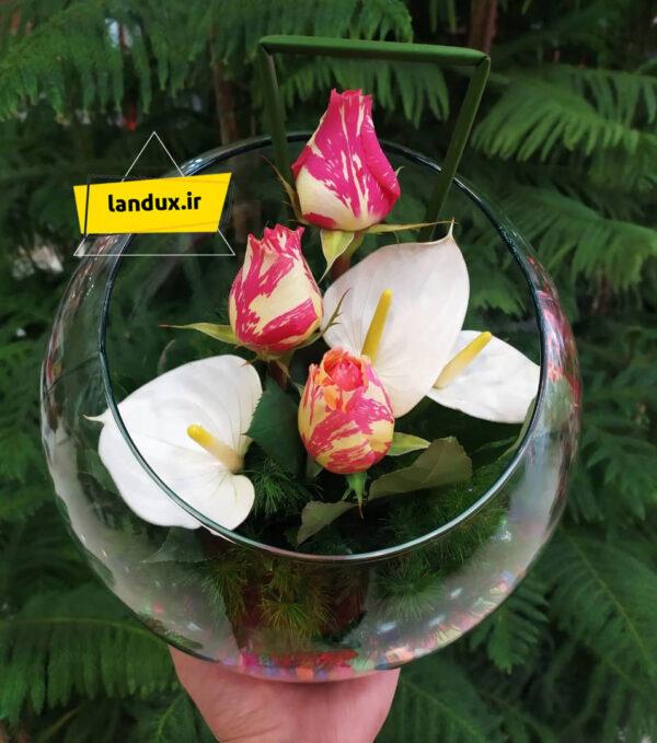 تنگ شیشه ای گل آنتریوم و رز