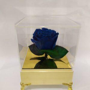 گل رز جاودان آبی