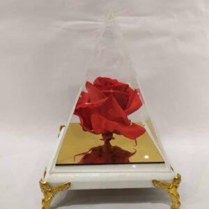 گل رز جاودان مثلثی