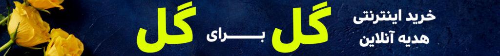 گل-اینترنتی-زنجان