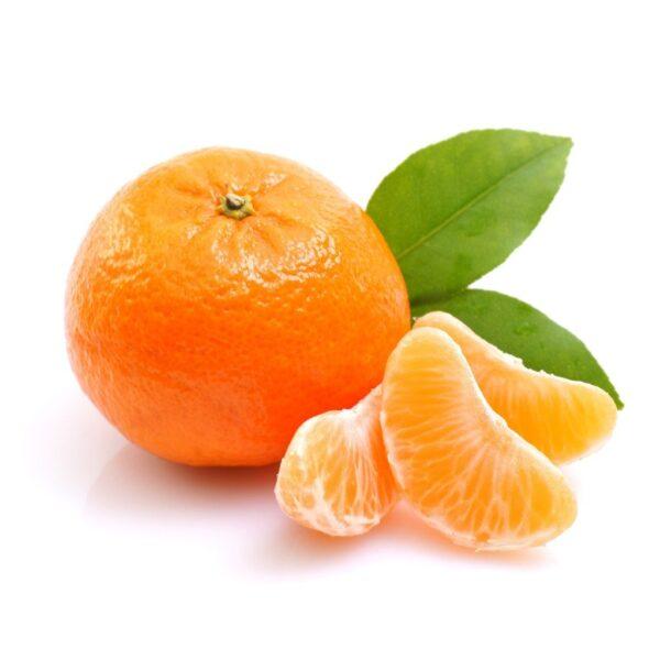 نارنگی شمال
