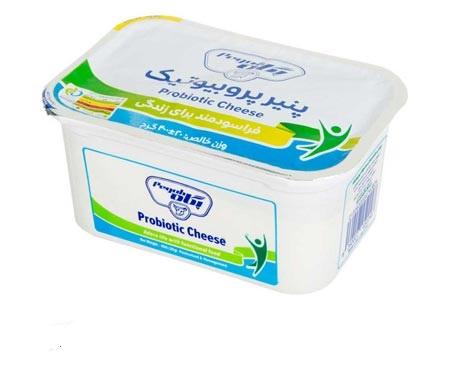 پنیر پروبیوتیک 400 گرم یواف پگاه