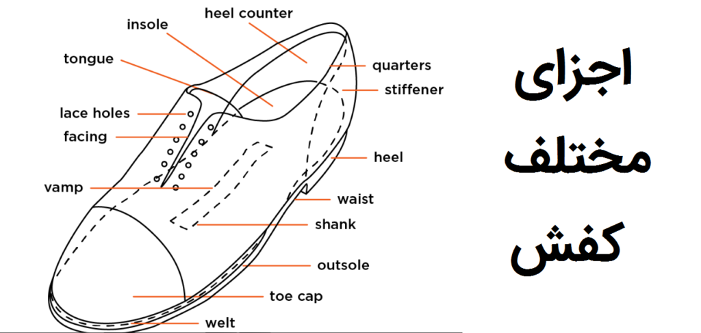 2 اجزای مختلف کفش